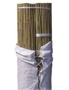 Bala tutor Bambú - 100 unidades