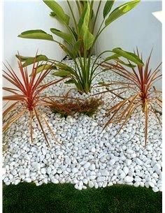 Canto rodado Blanco piedra de mármol | 25kg | Piedras decorativas para Jardín o espacios exteriores